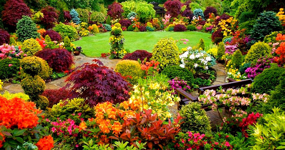 how to start a flower garden